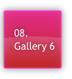 08.