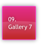 09. Gallery 7