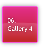 06.
