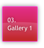 03.